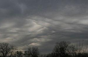 Grey-sky