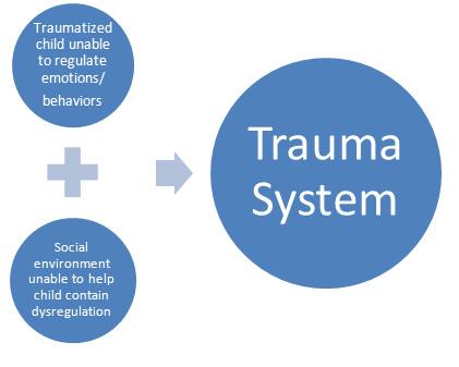 trauma-tst2