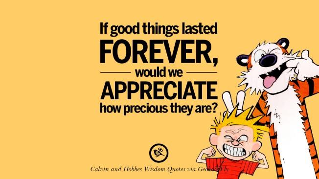 calvin-hobbes-quotes-wisdom-02